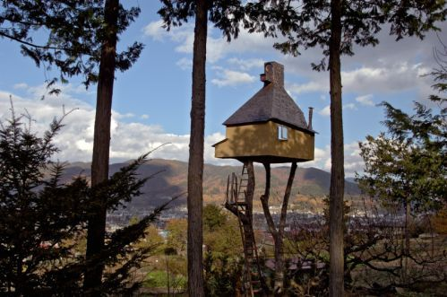 Shipping Container Architecture/Too High Treehouse