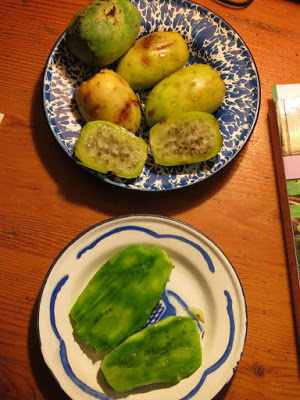 www.::lloydkahn-ongoing.blogspot.com:2012:12:eating-prickly-pear-cactus.html