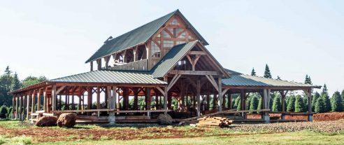 timber frame barn in oregon under construction