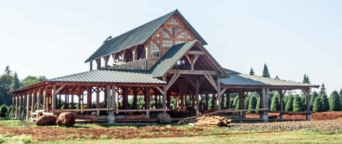 timber frame barn in oregon under construction