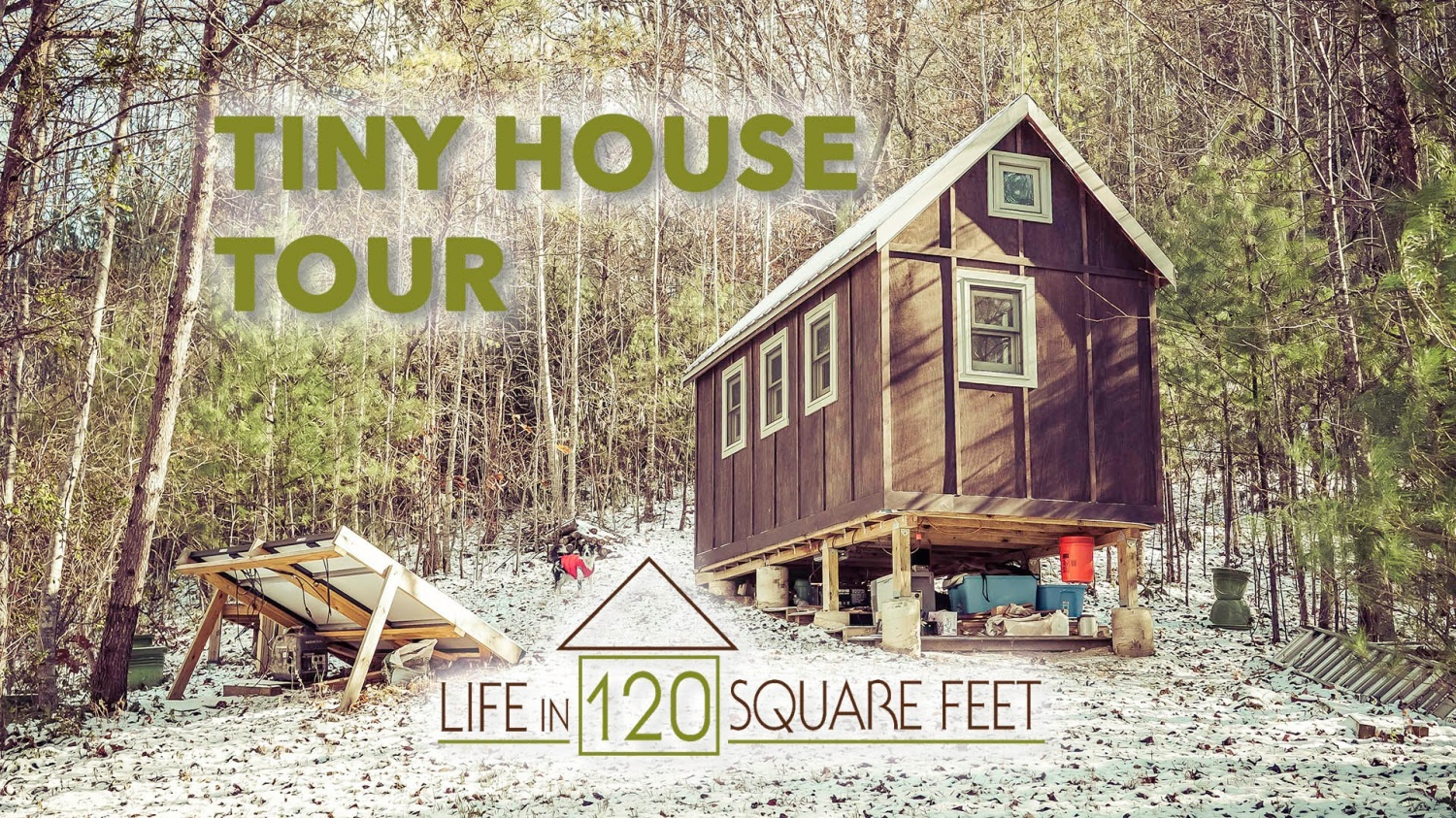 Laura Matts 120 Sq Ft Tiny House In Asheville Nc The Shelter