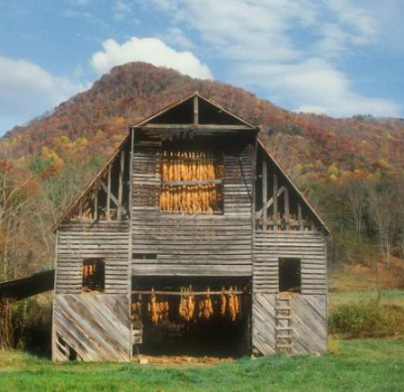 Meadows-Tobacco-barn-700-by-Tim-Barnwell-1