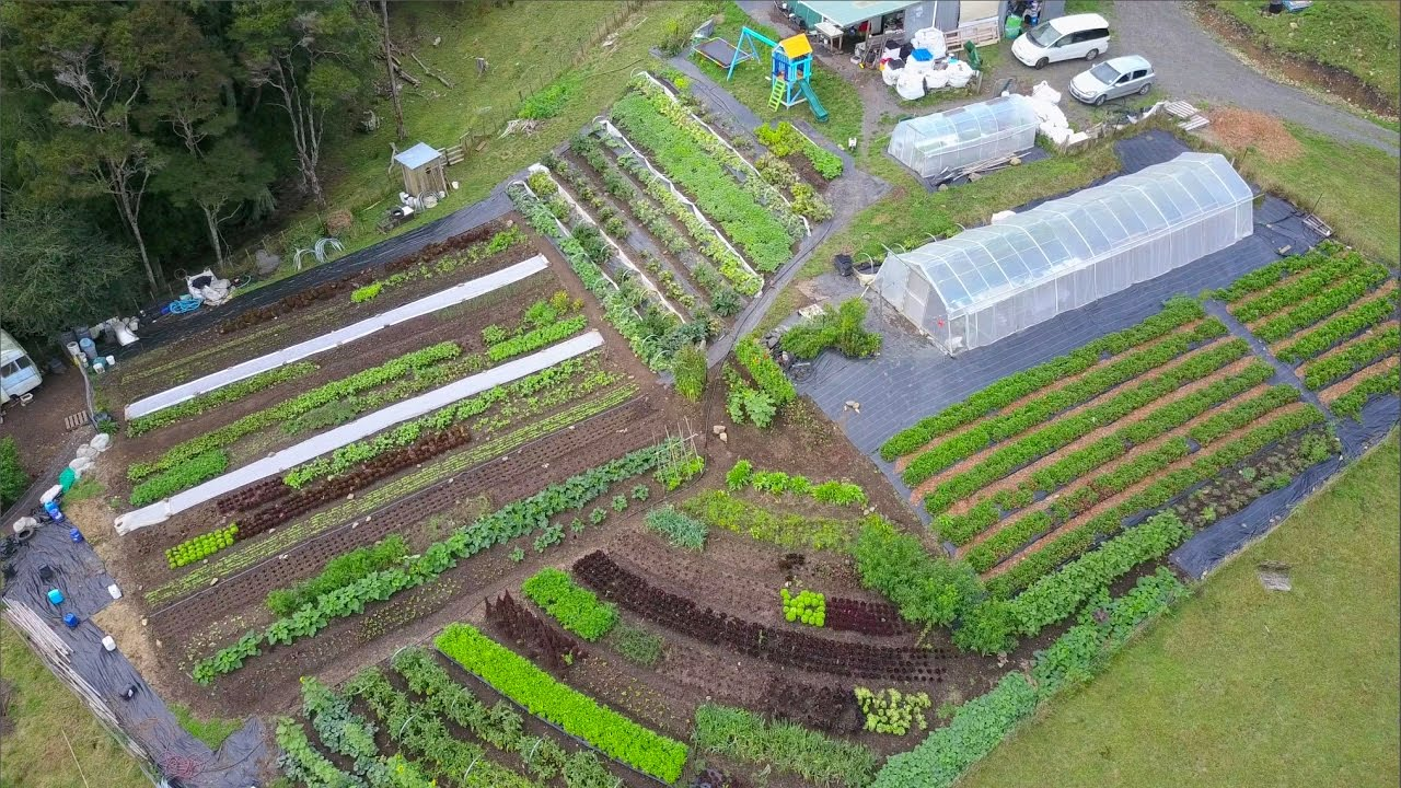 Amazing quarter acre farm in nz the shelter blog for Garden design ideas half acre